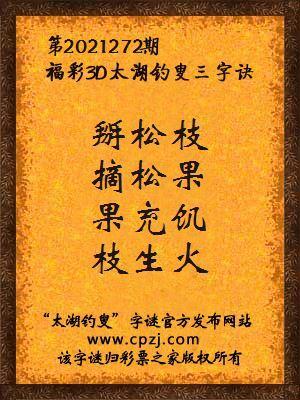 3d第2021272期太湖钓叟字谜:掰松枝,摘松果,果充饥,枝生火